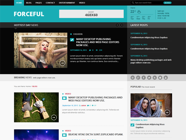 Forceful Lite Wordpress Theme