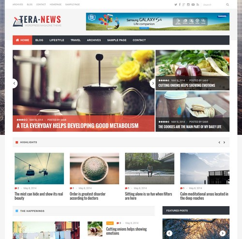 Tera News Wordpress Theme